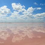 【ドローン映像有り】水面に映るピンク空。ピンクレイク ~メキシコ~
