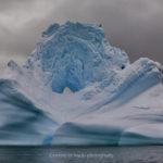 【南極旅章No.3】南極の異世界に浮かぶ、青の絶景。 ~絶景巨大氷河集~
